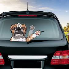 rear window stickers for cars
